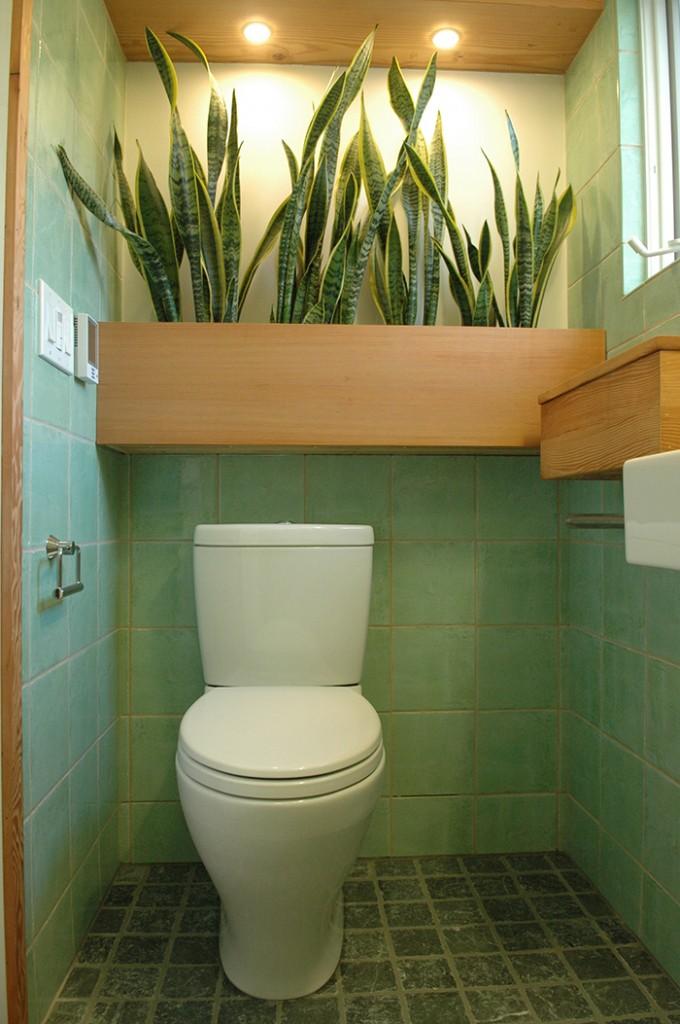 green-bath-4